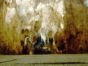 330px-'Cathedral'_in_Waitomo_Cave